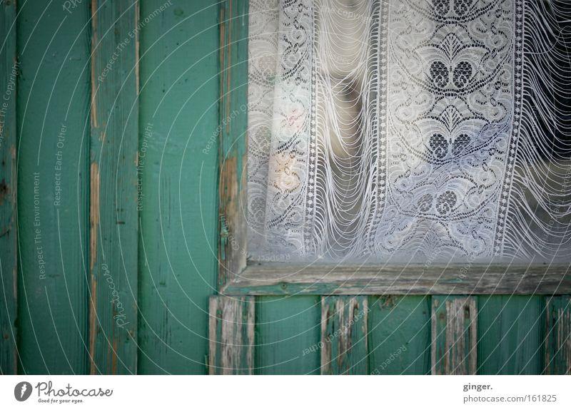 Kein Durchblick alt grün weiß Haus Fenster dunkel Holz grau Autofenster außergewöhnlich Glas Vergänglichkeit verfallen Hütte Holzbrett trashig