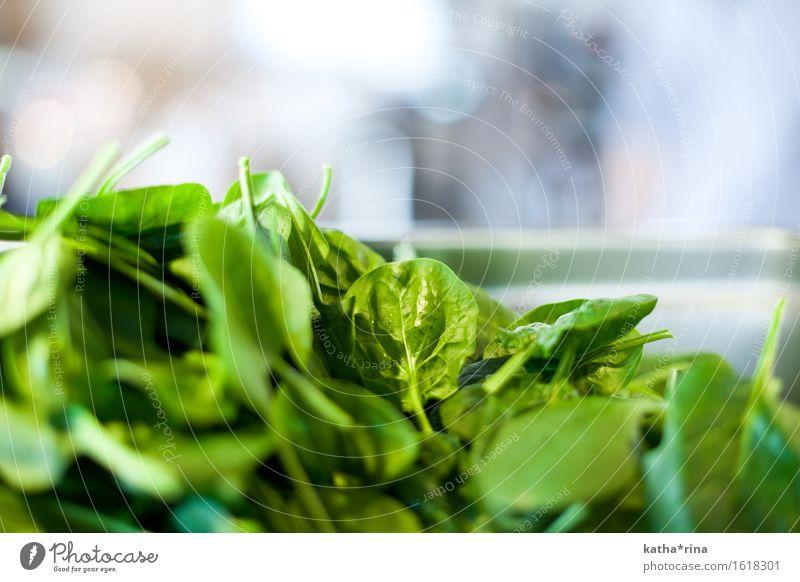 Blatt.Spinat Lebensmittel Gemüse Salat Salatbeilage Spinatblatt frisch Gesundheit grün Farbfoto Innenaufnahme Nahaufnahme Detailaufnahme Menschenleer