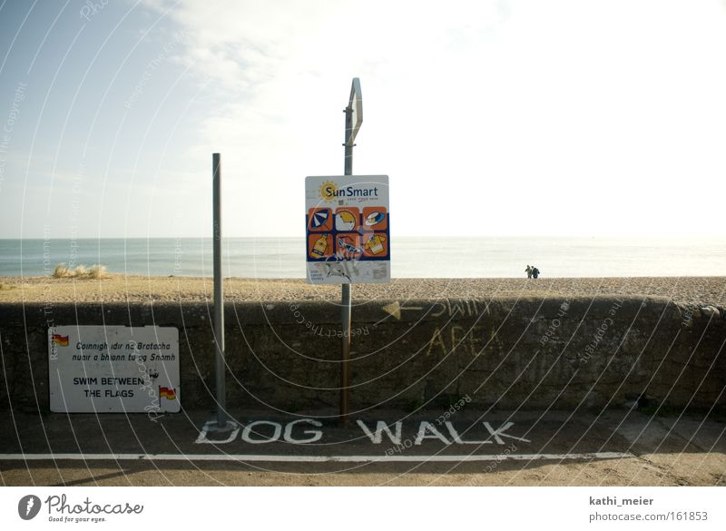 Irland im März_1 Himmel Sonne Sommer Freude Strand Meer Küste Hund lustig Warmherzigkeit Republik Irland Laufsteg Humor Ironie