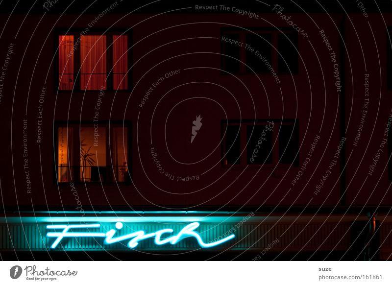 Frischer Fisch Typographie Schriftzeichen Text Nacht Langzeitbelichtung dunkel Konsum Leuchtreklame Haus Mitternacht offen Haushalt frisch retro Beleuchtung