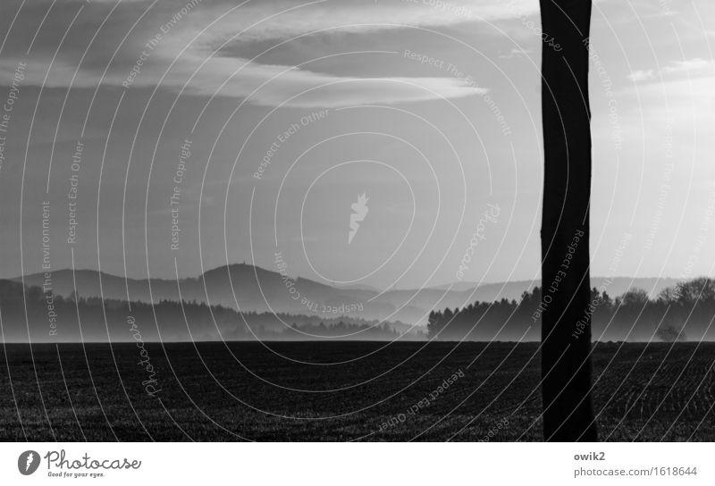 Lausitzer Horizont Umwelt Natur Landschaft Pflanze Erde Himmel Wolken Klima Schönes Wetter Nebel Baum Baumstamm Feld Wald Hügel Idylle Ferne Schwarzweißfoto