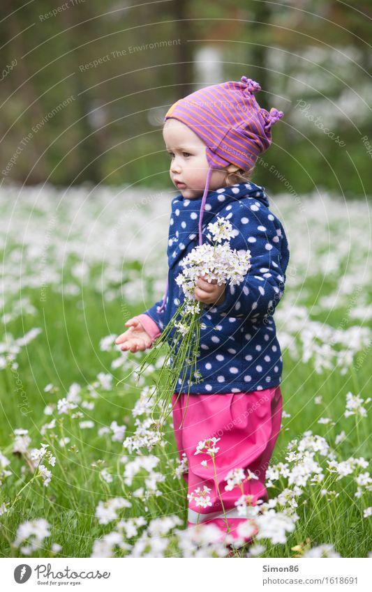 Flower Power feminin Kind Kleinkind Mädchen Kindheit 1 Mensch 1-3 Jahre Mütze blond ästhetisch schön Blumenwiese Punkt gepunktet pflücken Freude Frühling