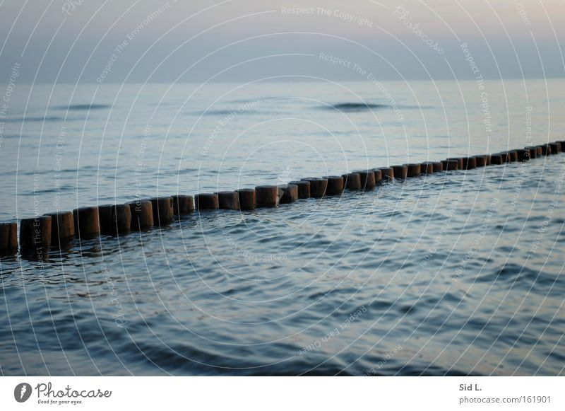 Man braucht nur eine Insel Wasser Meer blau ruhig Denken Wellen Frieden Buhne Hiddensee