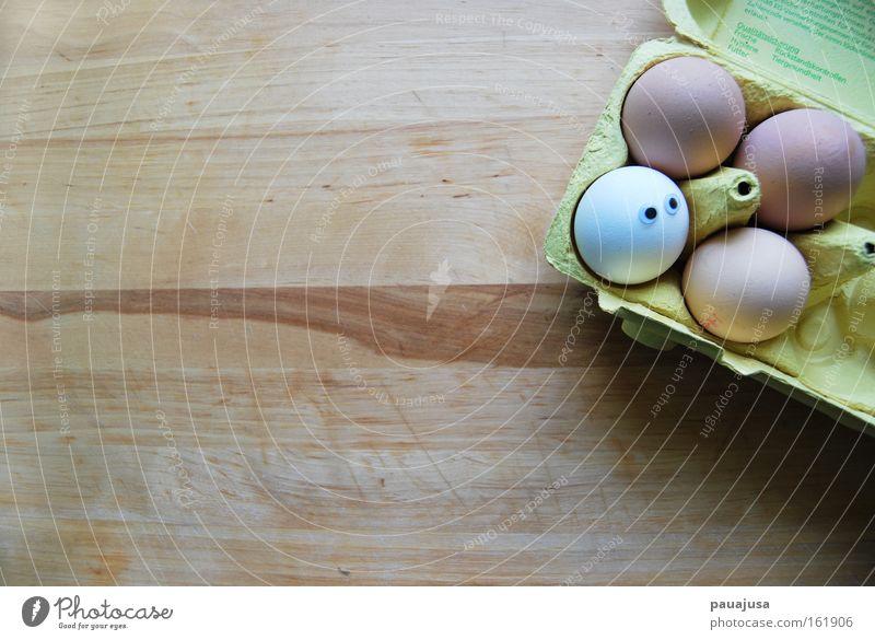 Ei ei ei weiß Einsamkeit braun Lebensmittel Ernährung Ostern einzigartig Kochen & Garen & Backen Frühstück Ei Bioprodukte Schalen & Schüsseln Mittagessen Haushuhn Identität Verpackung