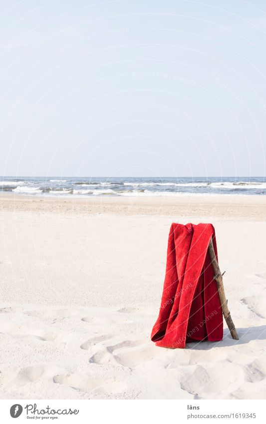 abhängen Himmel Natur Ferien & Urlaub & Reisen Sommer Wasser Sonne Meer Strand Umwelt Küste Schwimmen & Baden Sand Horizont Tourismus Luft Wellen