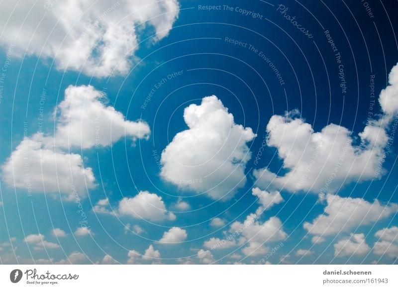 na geht doch !!!! Himmel blau weiß schön Sommer Wolken Luft Wetter