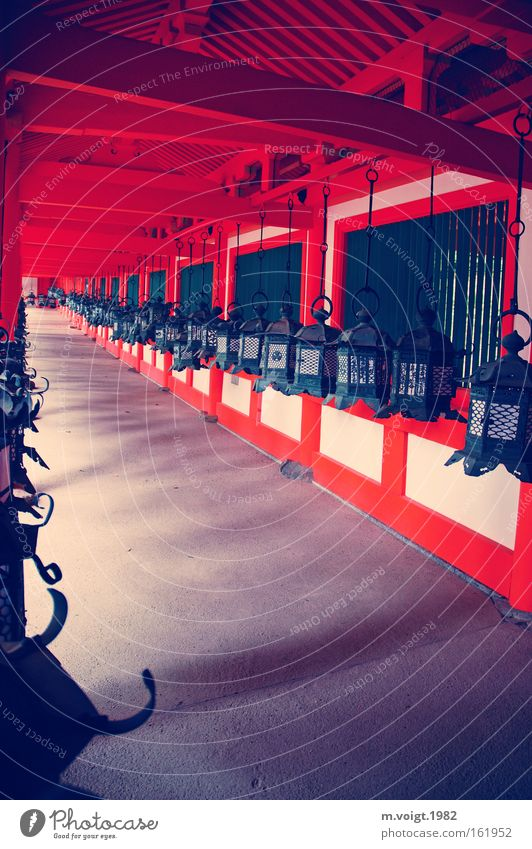 Laternen rot Holz Wege & Pfade Religion & Glaube Asien lang tief Japan Gang Tempel Gotteshäuser Buddhismus Lampion Schintoismus Nara