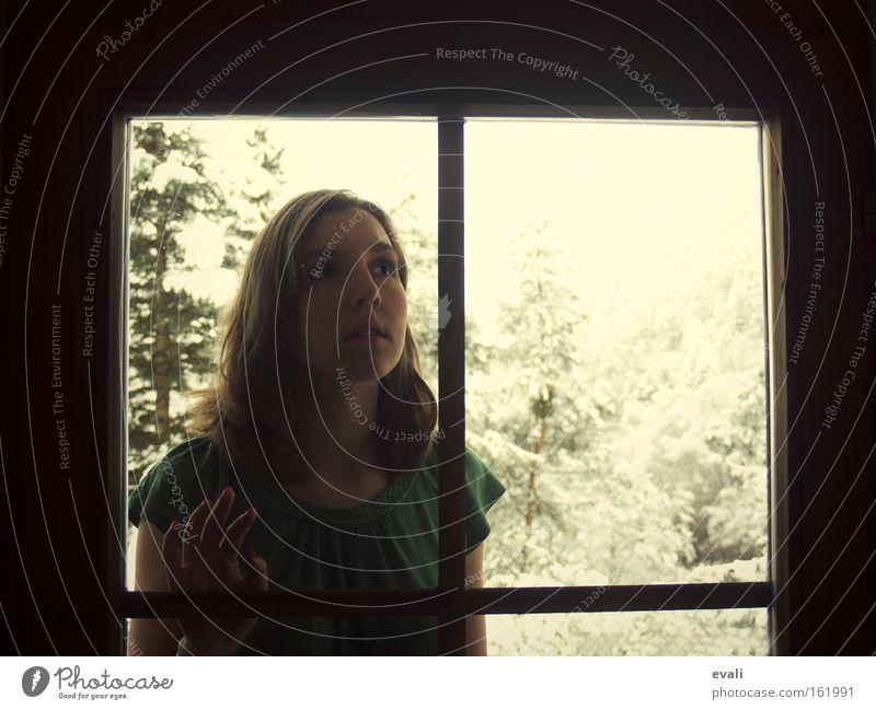 Let me in Frau Mensch Jugendliche Baum Winter dunkel Schnee feminin Fenster warten Erwachsene berühren Junge Frau aussperren