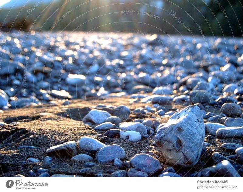 Strand Schatten Fluss Lech Gemeinde Lech Stein Hundeblick Löwenzahn Sonne Sonnenuntergang Küste Seeufer Flussufer Sand Sonnenstrahlen Kies Trauer Verzweiflung