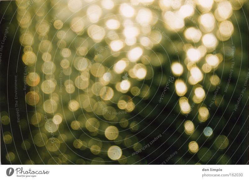ganz genau unscharf Wärme Regen Glas Tür Hintergrundbild gold Punkt Muster schimmern Himmelskörper & Weltall verteilt