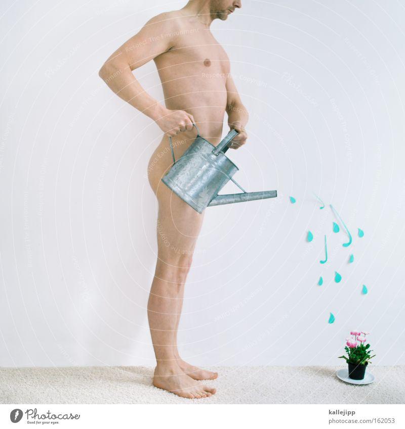 frühlingsgefühle Mann Wasser Pflanze nackt Frühling Wachstum Aktien Kapitalwirtschaft Nachkommen Kredit Gießkanne Gärtner Kannen finanziell Mensch