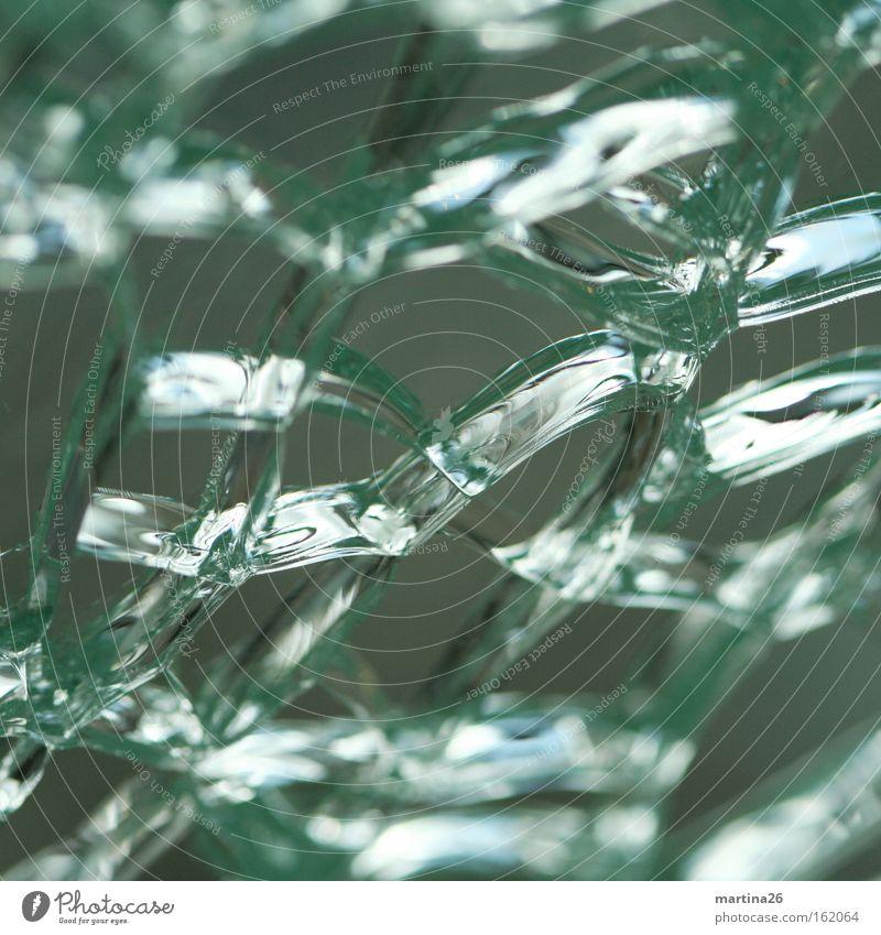 Zellverbund II Farbfoto Nahaufnahme Makroaufnahme abstrakt Strukturen & Formen Reflexion & Spiegelung Fenster Glas kaputt Stress Missgeschick Netzwerk
