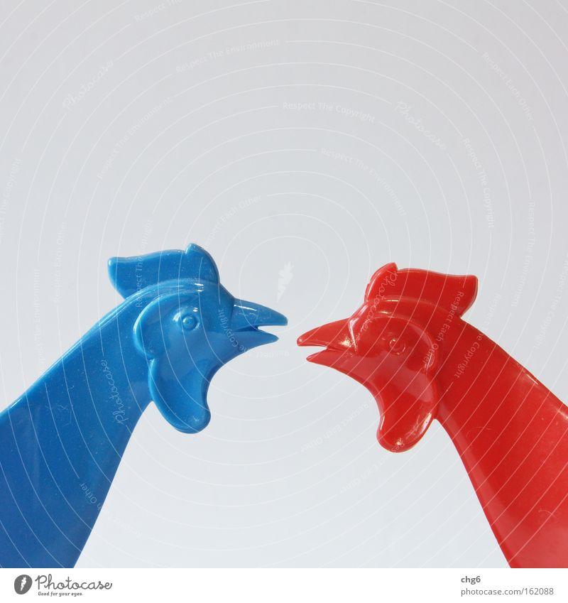 Streithähne blau weiß rot gefährlich Wut obskur Partnerschaft Aggression Ärger Hahn Vogel Gesprächspartner