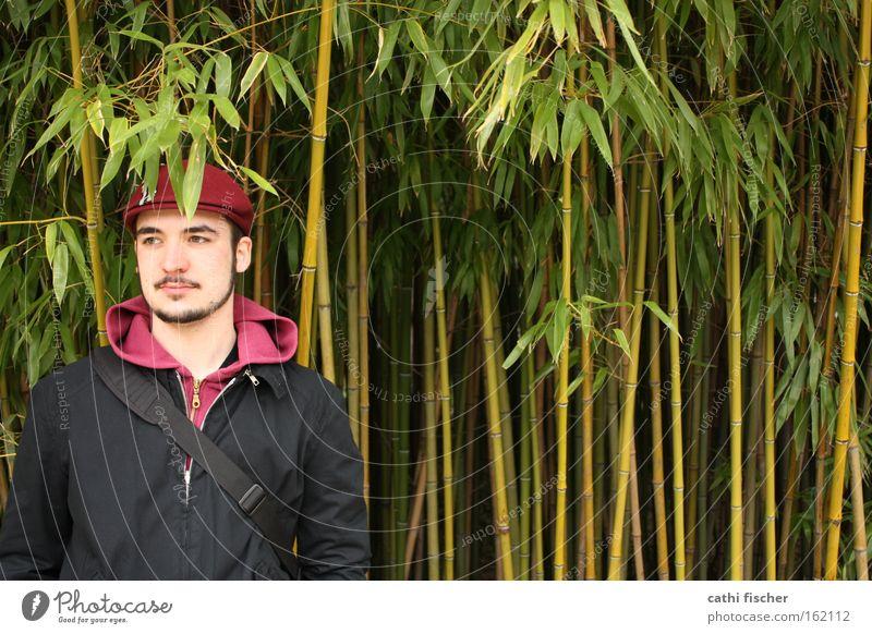 thomas Mann Natur grün Blatt schwarz Frühling Kopf stehen Jacke Bart Botanik Mensch Bambus Bambusrohr Mütze Baseballmütze