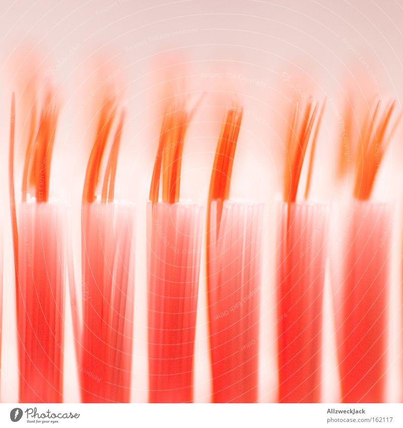 zahnborsten von zahnbürsten Zahnbürste Zahnpflege Bürste Zahnzwischenraum Reinigen Borsten Morgen Makroaufnahme Nahaufnahme mundpflege