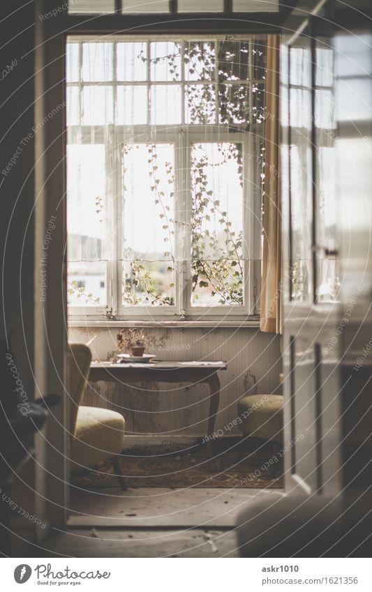 Bei Ingeborg Stadt alt Einsamkeit Haus Fenster Architektur Wand Mauer Tod Garten Häusliches Leben dreckig retro Armut Vergänglichkeit historisch
