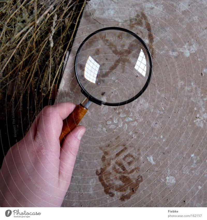 Sherlock Holmes Hand Bodenbelag Suche Neugier Spuren geheimnisvoll Örtlichkeit Polizist Fußspur entdecken Hinweis Lupe Kriminalität Mord Krimineller