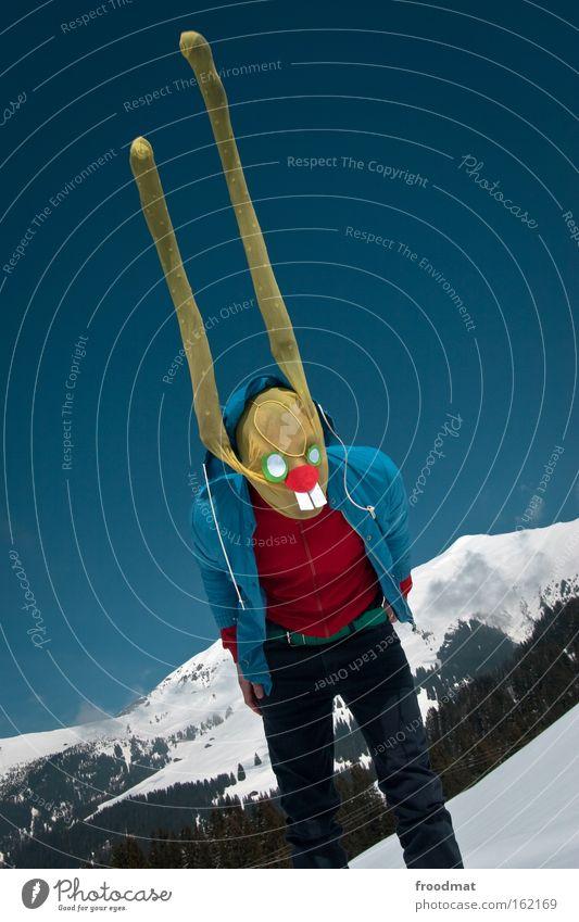 hoch die löffel Schnee Berge u. Gebirge lustig verrückt Ohr Ostern Alpen Maske Schweiz hören Strümpfe Hase & Kaninchen Strumpfhose verkleiden