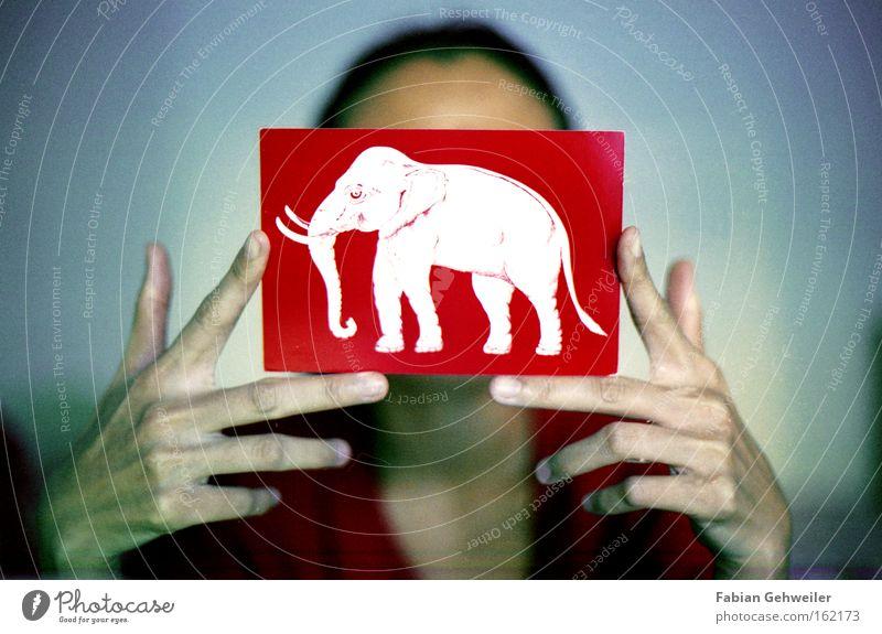 siam Hand alt weiß rot Asien Postkarte Elefant Thailand Nationalflagge