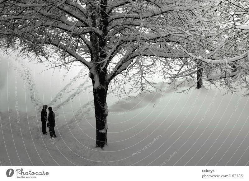 Hier trennt sich unser Weg Winter Schnee Mensch Baum Wege & Pfade laufen kalt Einsamkeit Trennung Schwarzweißfoto