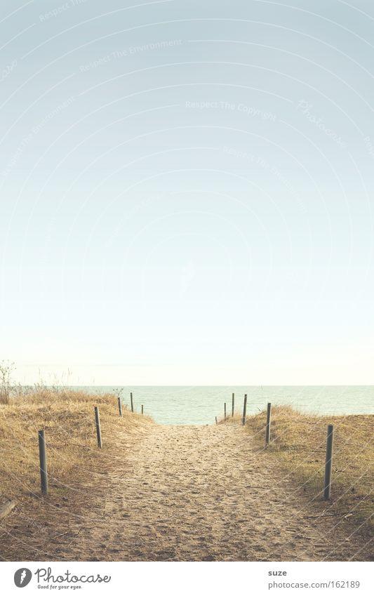 Zum Strand ruhig Ferne Freiheit Umwelt Natur Landschaft Urelemente Sand Luft Himmel Wolkenloser Himmel Horizont Sommer Klima Schönes Wetter Küste Ostsee Meer