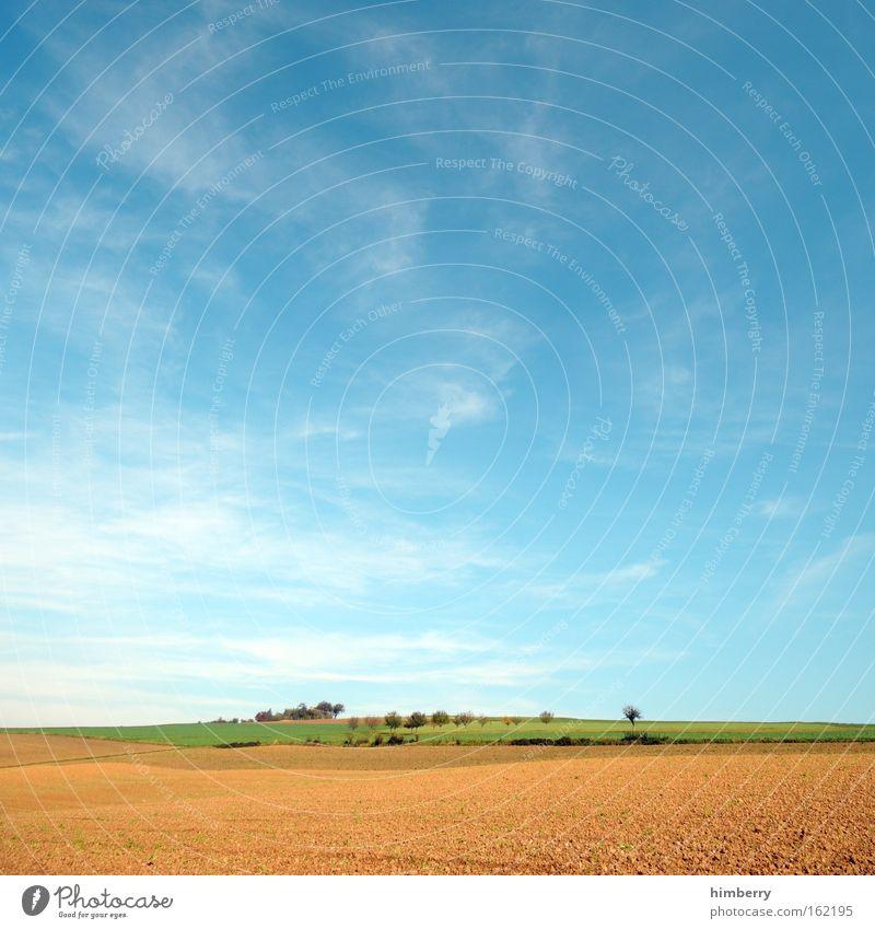 walk on sunday Himmel Natur blau Baum Ferien & Urlaub & Reisen Sommer Wolken ruhig Ferne Erholung Umwelt Landschaft Freiheit Glück Feld wandern