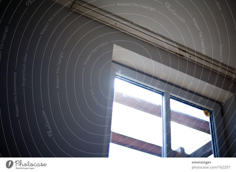 Fenster weiß Sonne Haus Wand Mauer Gebäude Wohnung Häusliches Leben Glasscheibe Überstrahlung