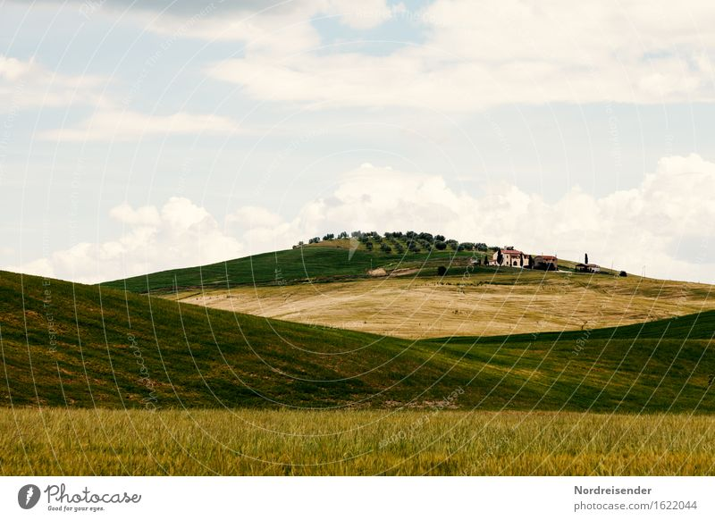 Toskana harmonisch ruhig Ferien & Urlaub & Reisen Tourismus Sommer Sommerurlaub Berge u. Gebirge wandern Natur Landschaft Wolken Schönes Wetter Gras Wiese Feld