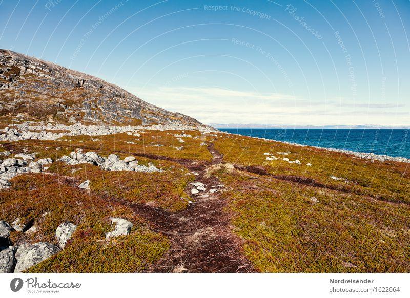 Wanderpfade Ferne Freiheit Meer wandern Natur Landschaft Himmel Sonne Sommer Schönes Wetter Gras Hügel Felsen Küste Wege & Pfade Freundlichkeit Fernweh