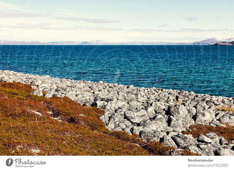 Nordatlantik Ferien & Urlaub & Reisen Tourismus Ferne Freiheit Sommer Meer Natur Landschaft Urelemente Wasser Schönes Wetter Küste Bucht Fjord maritim Fernweh