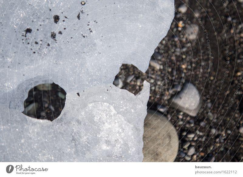 guckst du. Natur Strand Winter Gesicht kalt Umwelt Auge lustig Schnee Küste träumen Eis Kreativität Frost entdecken Island