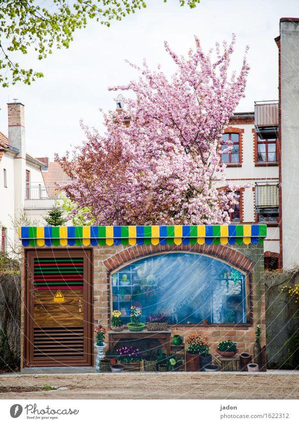 der frühling ist bunt. kaufen Stil Design Freizeit & Hobby Gärtnerei Haus Garten Dekoration & Verzierung Gartenarbeit Landwirtschaft Forstwirtschaft Handel