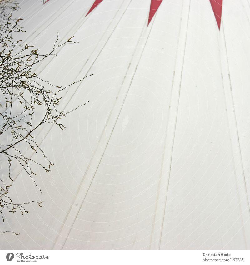 Zirkus Zelt Zirkuszelt Abdeckung weiß rot Bochum Baum Ast schwarz Streifen Dach Architektur Freizeit & Hobby Dinge