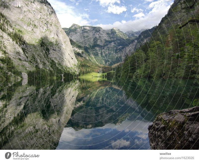 Mighty Mirror Lake Berge u. Gebirge Landschaft Wasser Schönes Wetter Baum Wald Felsen Berchtesgadener Alpen Seeufer Obersee Deutschland Europa Menschenleer