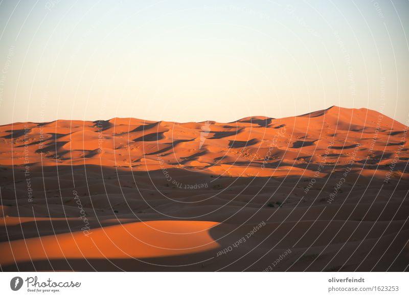 Sahara III Ferien & Urlaub & Reisen Ausflug Abenteuer Ferne Freiheit Expedition Umwelt Natur Landschaft Urelemente Erde Sand Himmel Wolkenloser Himmel Horizont