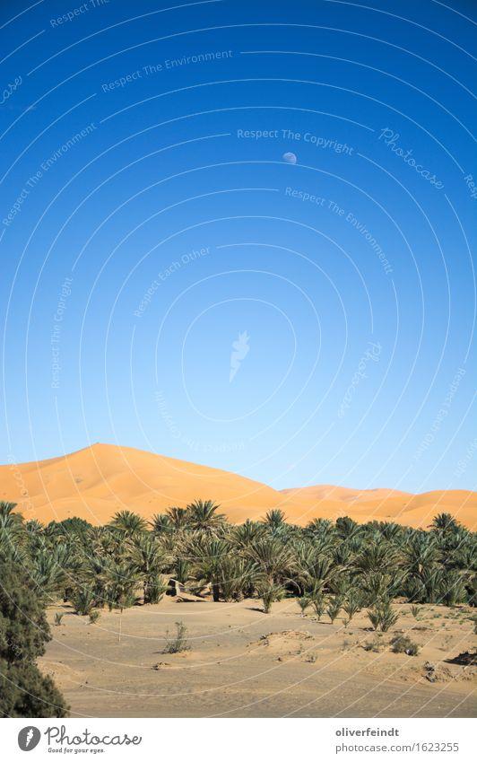 Marokko - Sahara Ferien & Urlaub & Reisen Ausflug Abenteuer Ferne Freiheit Expedition Umwelt Natur Landschaft Sand Himmel Wolkenloser Himmel Nachthimmel