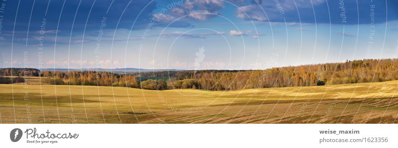 Himmel Natur blau Sommer schön grün Baum Landschaft Wolken Wald gelb Frühling Wiese natürlich Gras braun