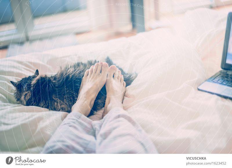 Mit Katze im Bett. Zuhause Mensch Frau Sommer Erholung Tier Fenster Erwachsene Stil Lifestyle Fuß Wohnung liegen Häusliches Leben genießen