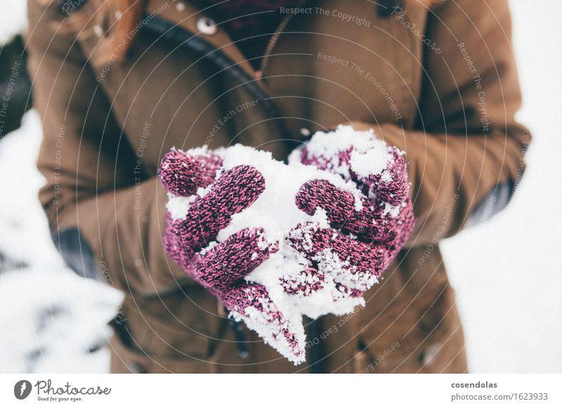 Schneeballschlacht Lifestyle Freizeit & Hobby Spielen Ausflug Winter Winterurlaub feminin Mädchen Junge Frau Jugendliche Hand 1 Mensch 13-18 Jahre 18-30 Jahre