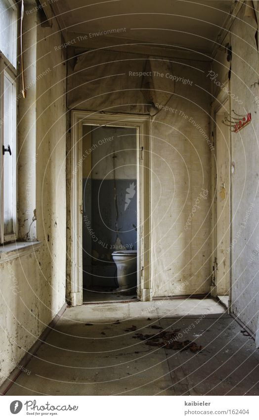 Stilles Örtchen Farbfoto Gedeckte Farben Innenaufnahme Menschenleer Textfreiraum unten Schatten Bad Publikum Ruine Einsamkeit Verfall Vergänglichkeit Toilette