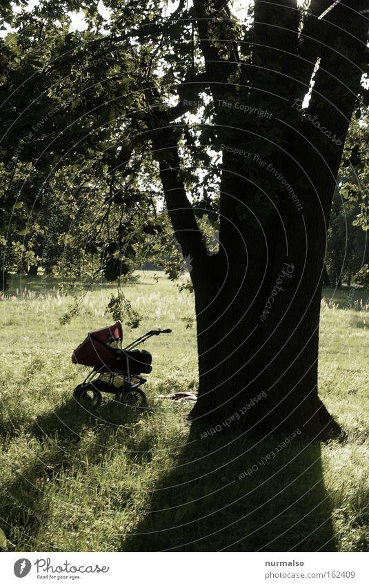 Kinder Kinder Baby Wagen Park Pause Baum Schatten Erholung schlafen schreien parken Gefühle Kleinkind