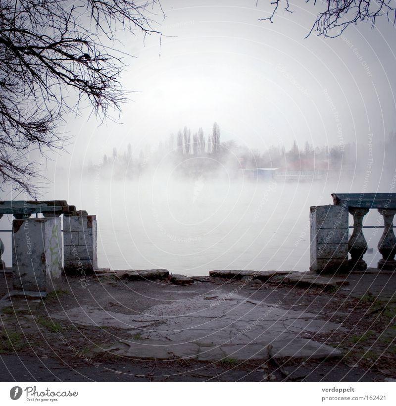 Wasser Baum Winter Herbst grau Architektur Nebel Wetter Jahreszeiten Zerstörung Umnebelung graue Wolken