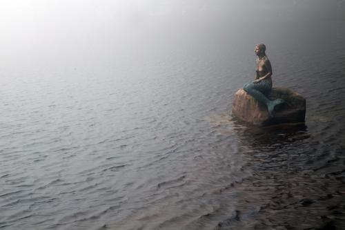 Licht am Horizont Junge Frau Jugendliche Natur Landschaft Wasser Frühling Wetter Nebel See Mummelsee Sehenswürdigkeit Stein Denken Blick außergewöhnlich kalt
