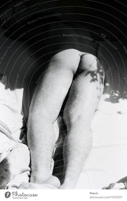 Der Engel der Geschichte fliegt rückwärts Mensch maskulin Junger Mann Jugendliche Erwachsene Partner Gesäß 1 18-30 Jahre liegen Erotik schön ästhetisch Sex