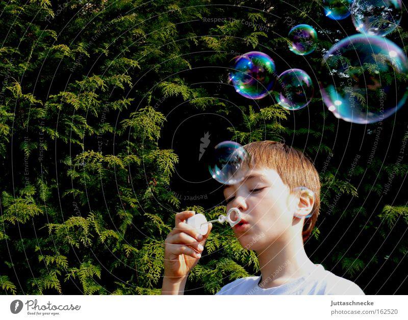 Dream on Kind schön Freude Junge Spielen träumen glänzend Frieden Spielzeug Kindheit Blase blasen Seifenblase platzen Mensch