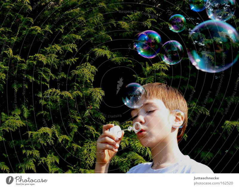 Dream on Seifenblase blasen Blase Kind Kindheit Junge träumen Spielzeug glänzend Spielen platzen schön Frieden Freude Dauerbrenner Juttaschnecke