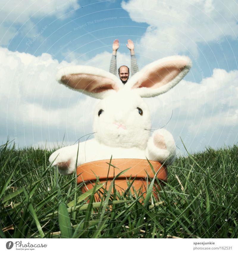 Easter Bunny comes around Mann Freude Tier Wiese springen Gras fliegen Spielzeug Ostern Hase & Kaninchen Topf Feiertag Osterhase Blumentopf Stofftiere