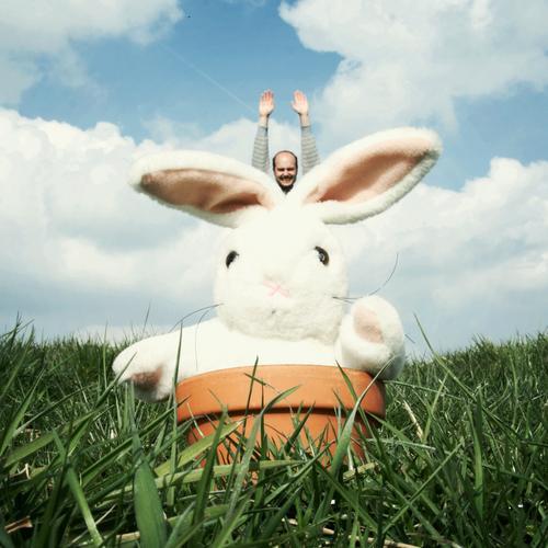 Easter Bunny comes around Ostern Osterhase Hase & Kaninchen Feiertag Blumentopf Topf Wiese Gras Tier Stofftiere Mann springen fliegen Freude