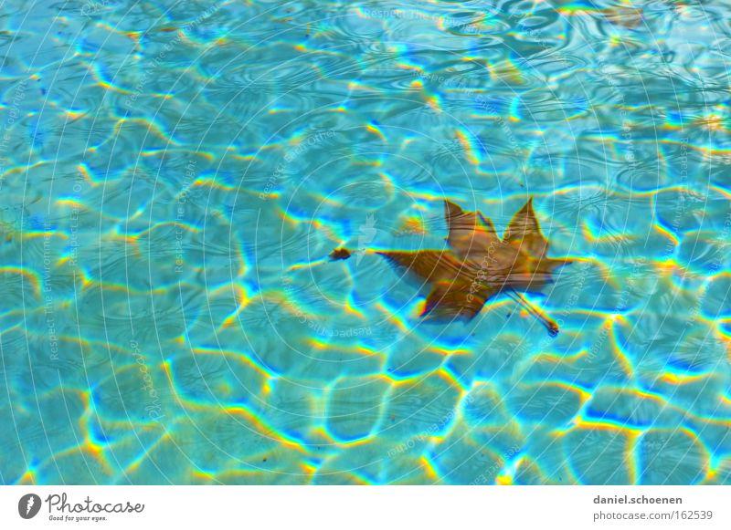 bald ist Freibadsaison blau Wasser Sommer Blatt Wellen Hintergrundbild Schwimmbad Im Wasser treiben Oberfläche