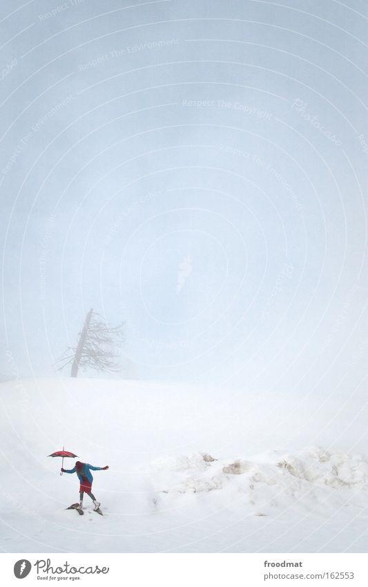 poppins Frau Himmel Baum Winter kalt Schnee Berge u. Gebirge Zufriedenheit Nebel trist Schweiz Regenschirm Sturm Leidenschaft Surrealismus kahl